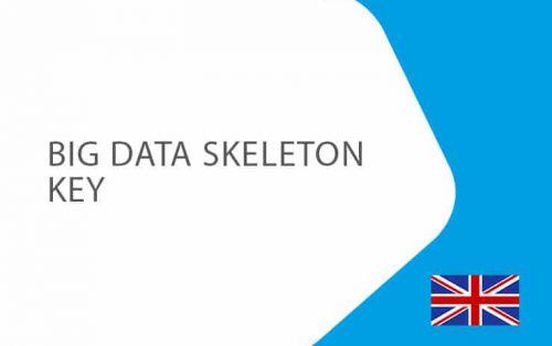 Big-Data-Skeleton-Key