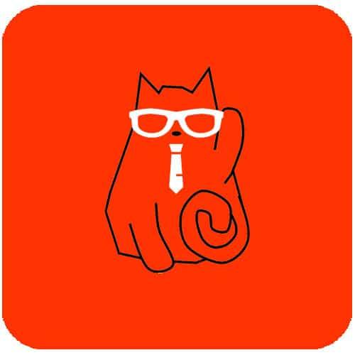 The Boss Cat